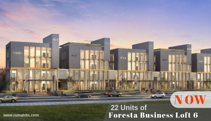 Foresta Business Loft 6